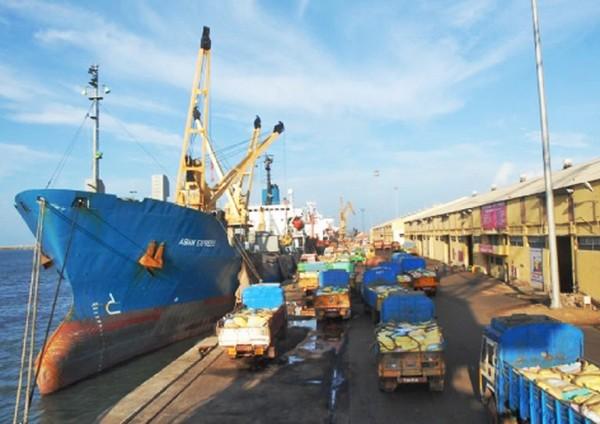 chen.harbour