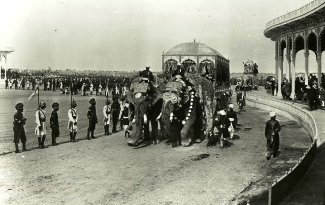 Delhi durbar of 1903 - 9 -elephant carriage of maharaja of Rewa
