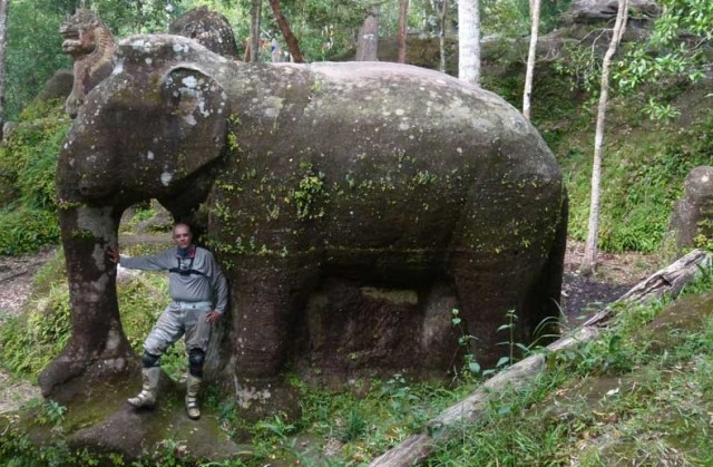 reed elephant