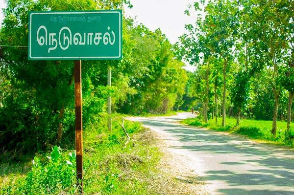 Image result for நெடுவாசல்