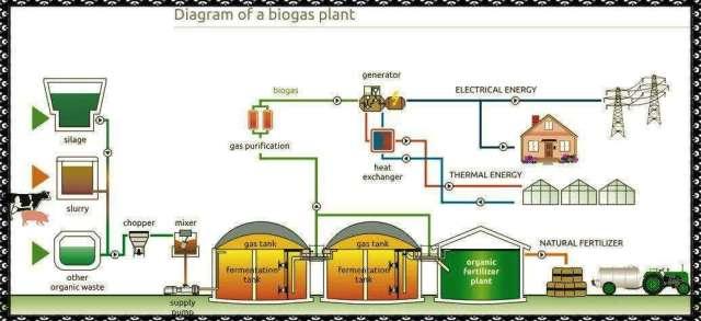 biogas_plant_14006